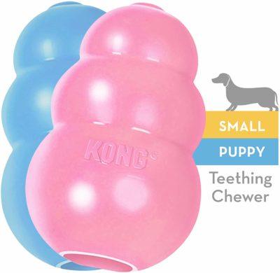 puppy_kong