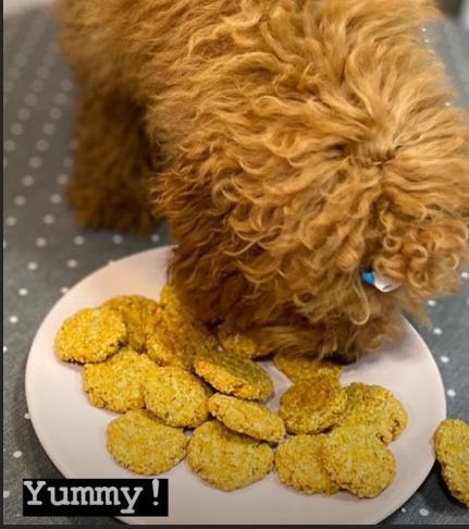 Galletas perrunas, alimento para perros caniches saludable, fresco y natural. Receta exclusiva.