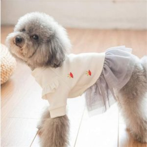 ropa para perros pequeños. Moda casual para perros caniches toy o enanos. O poodles de otros tamaños