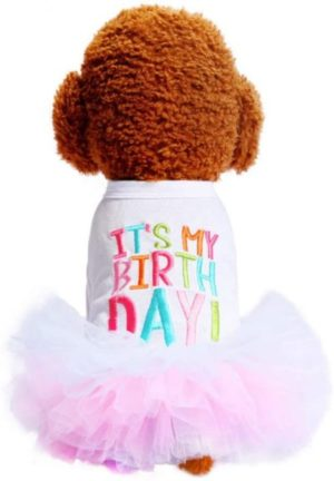 traje o vestido de cumpleaños para caniche toy