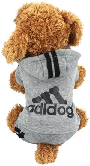ropa deportiva para caniche Perro deportivo