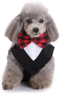 esmoquin para perro pequeño comprar online