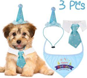 set de cumpleaños para perro caniche o perros pequeños