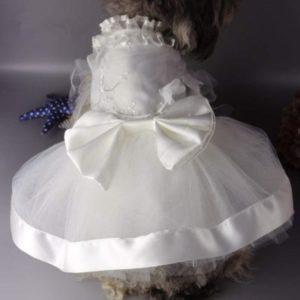 vestido de fiesta para perra pequeña , caniche traje de novia comprar on line