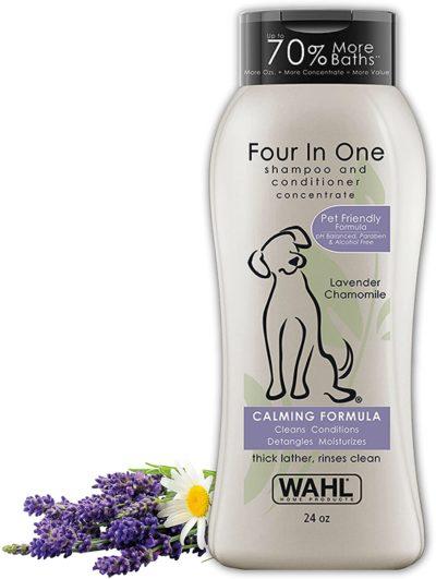 shampoo para perros caniches
