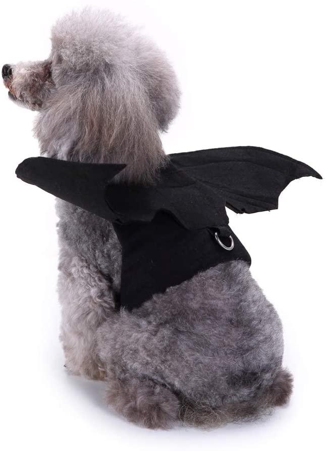 Disfraz de murciélago para Halloween para caniches. Alas de disfraz para caniche para halloween.