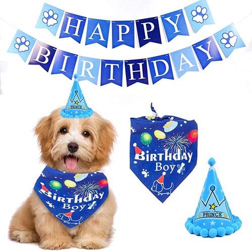 Kit de cumpleaños para perros