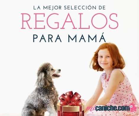 Descubre todos los regalos para mamá que hemos seleccionado en este catálogo especial sobre mamá de caniche o poodle.