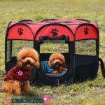 corrales para perros caniches