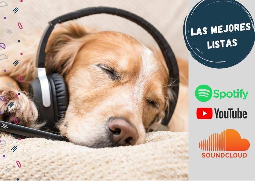 Música relajante y para dormir perros de todas las razas, listas en todas las plataformas.