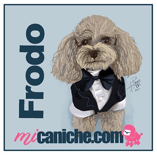 Doodle Pet de Frodo caniche toy - Boceto rápido - retrato para perros